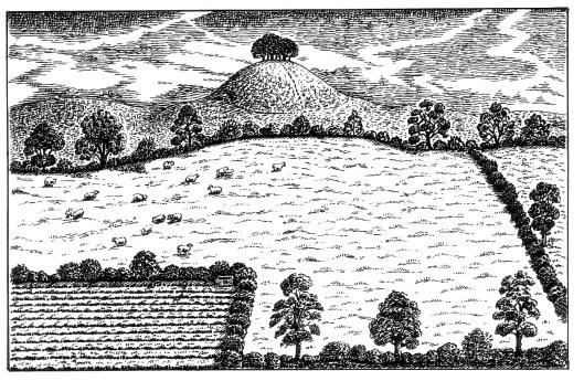3 - The Roundhill dedication-1